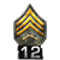 http://www.mlwgames.com/badcompany2/img/ranks/12.png